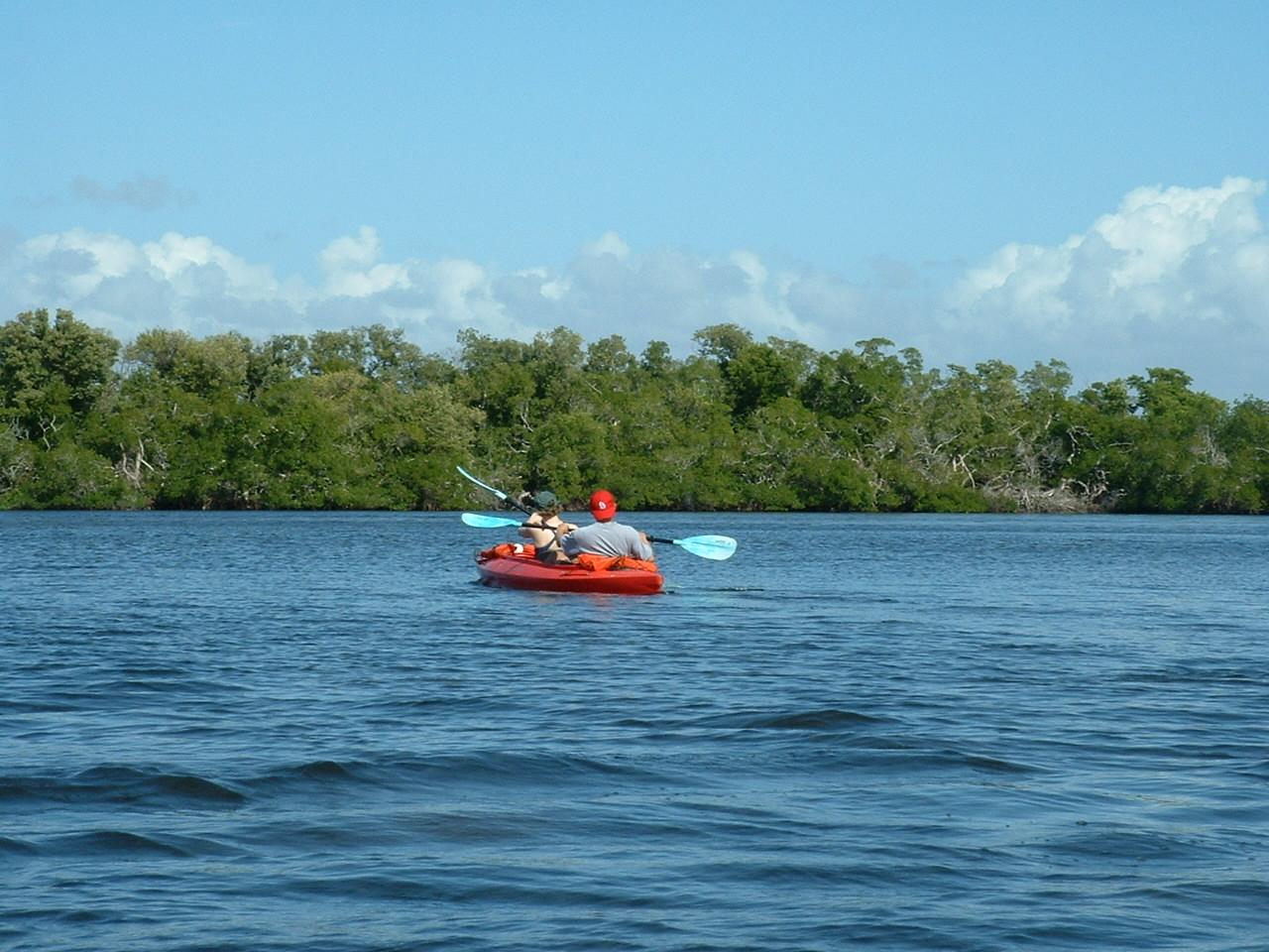Kayaking Bonita Springs - Island Coast Transportation